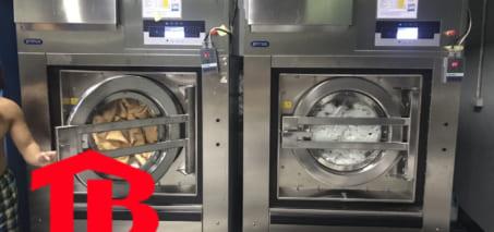 Tìm hiểu máy giặt công nghiệp primus