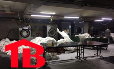 mua máy giặt chăn công nghiệp 30kg hãng nào tốt